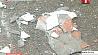 Вопиющий случай произошел в одном из столичных дворов Абуральны выпадак адбыўся ў адным са сталічных двароў