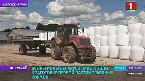 В Беларуси первый укос трав выполнен на 246 тыс. га