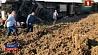 На северо-западе Турции сошел с рельсов пассажирский поезд На паўночным захадзе Турцыі сышоў з рэек пасажырскі цягнік