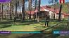 Как живут и тренируются белорусские спортсмены во время пандемии