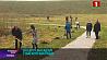 Минчане активно принимают участие в озеленении города Мінчане актыўна бяруць удзел у азеляненні горада