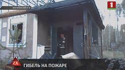 В Могилевском районе на пожаре погиб человек
