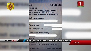 Жительница Горок подозревается в мошенничестве на сумму более 5000 рублей