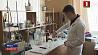 Белорусские ученые работают над новым лекарством, которое победит рак желудка Беларускія навукоўцы працуюць над новымі лекамі, якія перамогуць рак страўніка