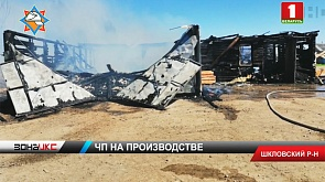 Большой пожар в Шкловском районе