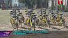 В Минске пополнился парк сервиса по шерингу У Мінску папоўніўся парк сэрвісу па шэрынгу
