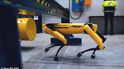 Норвежская нефтяная компания наняла робота Boston Dynamics Spot для патрулирования своего судна