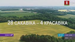 """В выходные стартует акция """"Неделя леса"""" У выхадныя стартуе акцыя """"Тыдзень лесу""""  Forest Week to start in Belarus on weekend"""