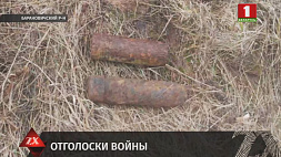 Очередной снаряд был обнаружен в Барановичском районе местным жителем