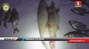 Ущерб природе, нанесенный браконьером в Кировском районе, оценили в 7 тысяч рублей