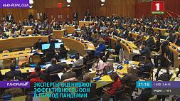 Эксперты оценивают эффективность ООН в период пандемии