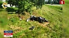 В Фаниполе в аварии погиб мотоциклист У Фаніпалі ў аварыі загінуў матацыкліст