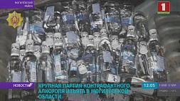 Крупная партия контрафактного алкоголя изъята в Могилевской области Буйная партыя кантрафактнага алкаголю канфіскаваная ў Магілёўскай вобласці