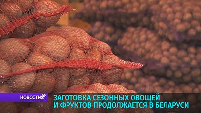 В Беларуси в самом разгаре заготовка осеннего урожая