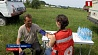 Сотрудники ГАИ и волонтеры Красного Креста выехали в поля Гомельского района Супрацоўнікі ДАІ і валанцёры Чырвонага Крыжа выехалі ў палі Гомельскага раёна