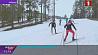 На искусственном снегу в Раубичах идет обкатка отечественных пластиковых лыж  На штучным снезе ў Раўбічах ідзе абкатка айчынных пластыкавых лыжаў