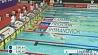 В столице Катара Дохе продолжается этап Кубка мира по плаванию У сталіцы Катара  Досе  працягваецца этап Кубка свету па плаванні