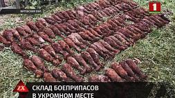 Более 200 минометных мин времен войны нашли в деревне Васюты Витебского региона
