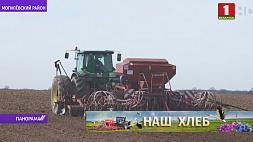 Погода вносит коррективы в темпы сельхозработ Надвор'е ўносіць карэктывы ў тэмпы сельгасработ