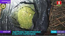 Госинспекторы задержали подозреваемых в обороте наркотиков Дзяржінспектары затрымалі падазроных у абарачэнні наркотыкаў