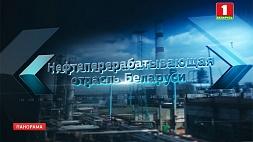 Значение нефтехимической отрасли для экономики Беларуси Значэнне нафтахімічнай галіны для эканомікі Беларусі