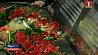 Уникальный памятный объект появился в Минске Унікальны памятны аб'ект з'явіўся ў Мінску