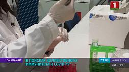 Ученые изучают антитела и коллективный иммунитет к вирусу Навукоўцы вывучаюць антыцелы і калектыўны імунітэт да віруса