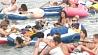 Курьезным происшествием  завершился в США ежегодный заплыв