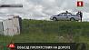 В Рогачевском районе микроавтобус сбил велосипедиста