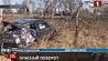 Смертельная авария в Могилевском районе. ГАИ выясняет обстоятельства