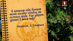 "Дачники спрашивают - программа ""Дача"" отвечает"
