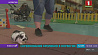 В Норвегии кролики соревнуются в прыжках У Нарвегіі трусы спаборнічаюць у скачках