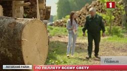 Пеллеты - самое востребованное древесное топливо на европейском рынке Пелеты - самае запатрабаванае драўнянае паліва на еўрапейскім рынку