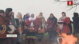 """В деревне Новины обряд """"Тянуть Святки на дуб"""" продолжают проводить по   всем канонам  У вёсцы Новіны абрад """"Цягнуць Каляду на дуба"""" працягваюць праводзіць паводле  ўсіх канонаў"""