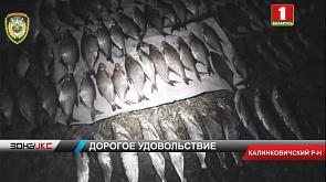 34 тысячи рублей штрафа придется выплатить браконьерам, которых задержали на реке Припять