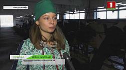 В нынешнем году агропромышленный комплекс Витебщины пополнился 120 дипломированными работниками  Сёлета аграпрамысловы комплекс Віцебшчыны папоўніўся 120 дыпламаванымі работнікамі