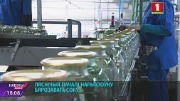 Лесничие начали заготовку березового сока Ляснічыя пачалі нарыхтоўку бярозавага соку