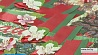 В дни 70-летия Великой Победы на лацканах белорусов распустятся цветки яблони У дні  70-годдзя  Вялікай Перамогі на штрыфлях беларусаў распусцяцца кветкі яблыні