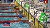 Брест принимает открытый чемпионат Беларуси по плаванию на короткой воде Брэст прымае адкрыты чэмпіянат Беларусі па плаванні на кароткай вадзе