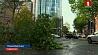В Великобритании во время шторма от причала оторвался круизный лайнер с 500  пассажирами У Вялікабрытаніі падчас шторму ад прычала адарваўся круізны лайнер з 500  пасажырамі на борце