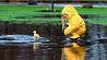 Сильный ветер и дожди ожидаются в Беларуси 30 мая