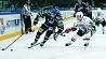 Звезды мирового хоккея в эти дни выбирают Минск Зоркі сусветнага хакея  ў гэтыя дні выбіраюць Мінск Stars of world hockey choose Minsk these days