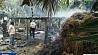 Взрыв прогремел на фабрике по производству фейерверков в Индии Выбух прагрымеў на фабрыцы па вытворчасці феерверкаў у Індыі