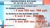 В Беларуси с августа этого года возрастают детские пособия У Беларусі са жніўня гэтага года ўзрастаюць дзіцячыя дапамогі