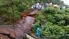 В перуанской провинции Ла-Конвенсьон обрушился висячий мост У перуанскай правінцыі Ла-Канвенсьён абваліўся вісячы мост