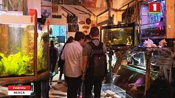Акуленок Академик переехал в мобильный музей океанографии Акулёнак Акадэмік пераехаў у мабільны музей акіянаграфіі