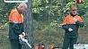 Республиканские соревнования среди вальщиков леса проходят на Полесье Рэспубліканскія спаборніцтвы сярод вальшчыкаў лесу праходзяць на Палессі National competitions among tree fellers held in Polesie