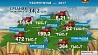 Массовая уборка урожая в стране продолжается  Масавая ўборка ўраджаю ў краіне працягваецца