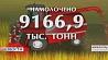 В этом году Беларусь получает рекордный урожай зерновых Сёлета Беларусь атрымлівае рэкордны ўраджай збожжавых