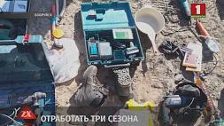 Серийный дачный вор задержан в Бобруйске